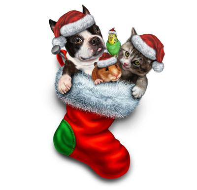 Oswego County Humane Society's Home for the Holidays goes virtual