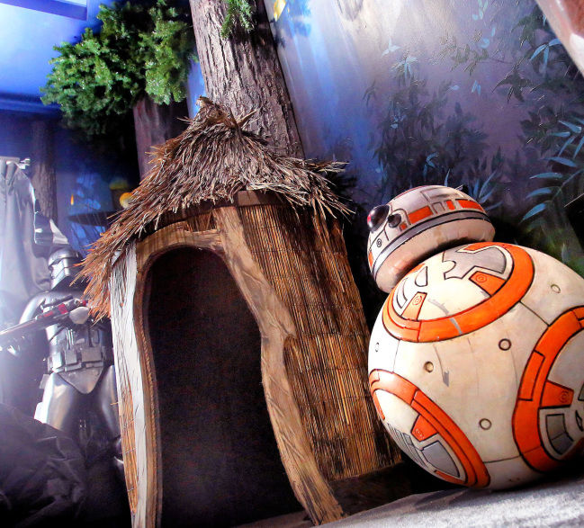Spend the night in a galaxy far, far away Disney's Star Wars inspires themed rentals in Florida