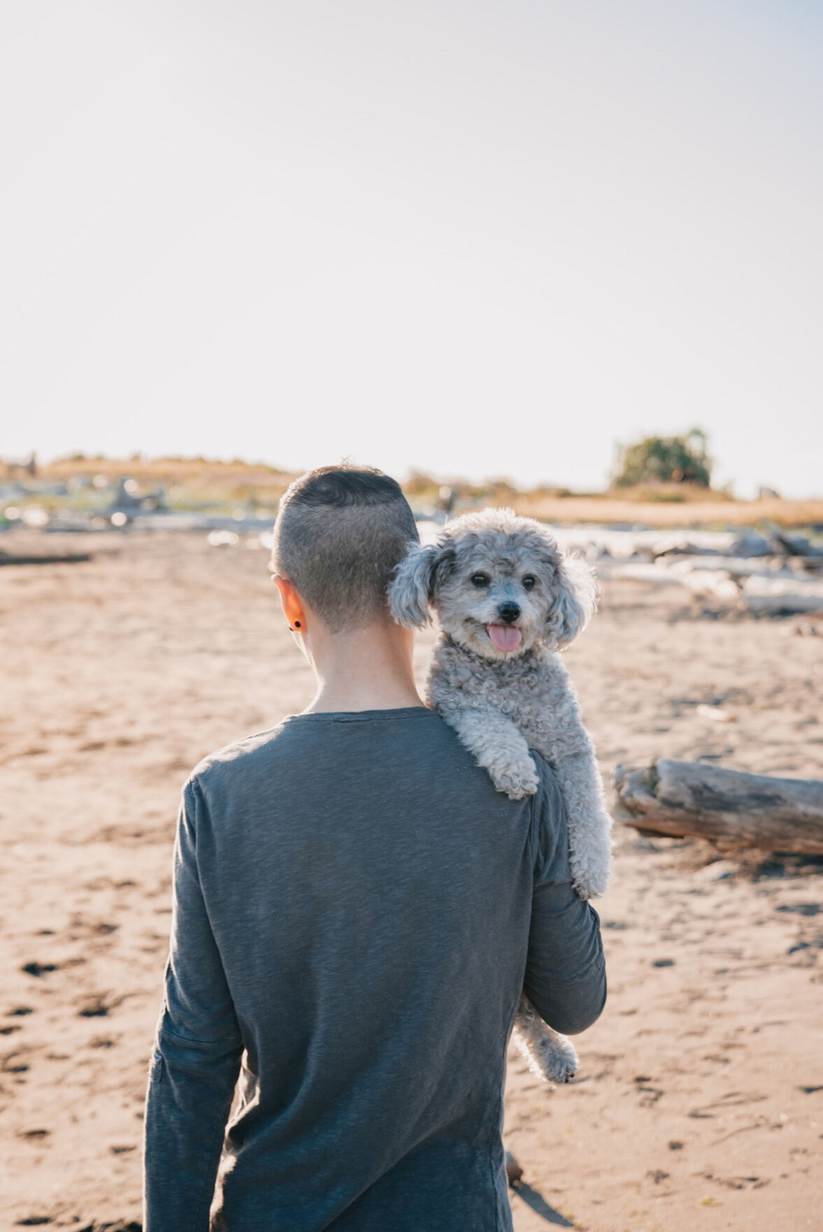 Camping with your canine