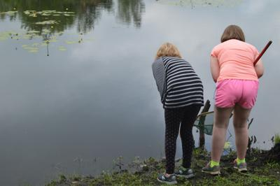 Pond Safari at the Amboy 4-H Environmental Education Center