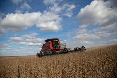 Farm bailout money likely to be included in stop-gap spending bill amid pressure