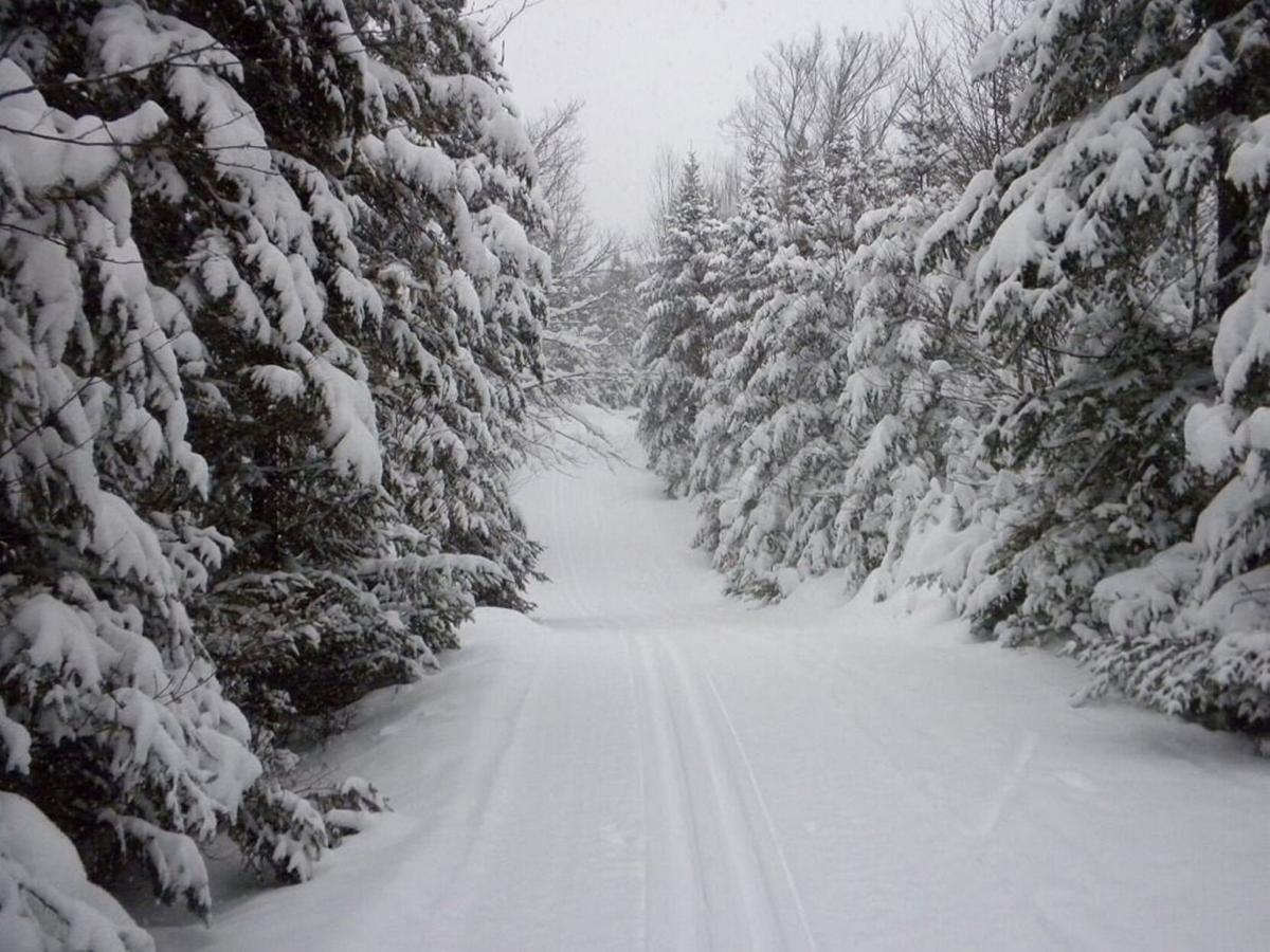 Cross country skiers rejoice