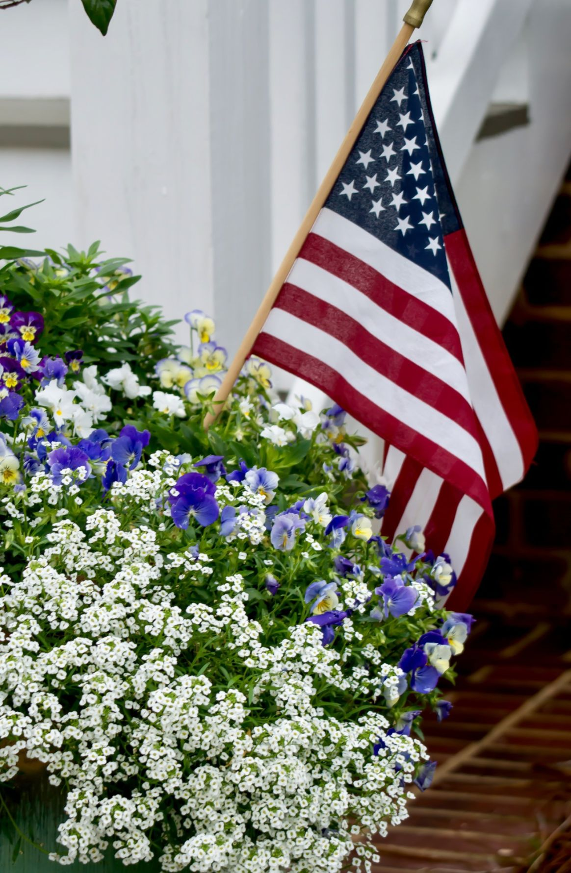 'OLD GLORY' COLORS shine in 2020