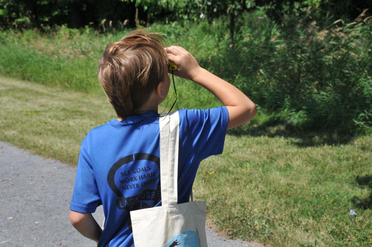 Zenda nature preserve offers insect trek for kids