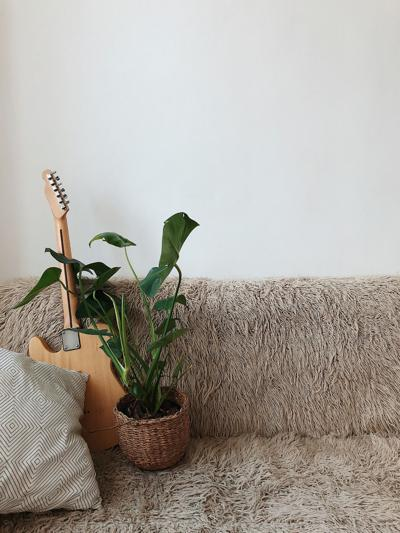 10 ways to bond with your houseplants while you're at home