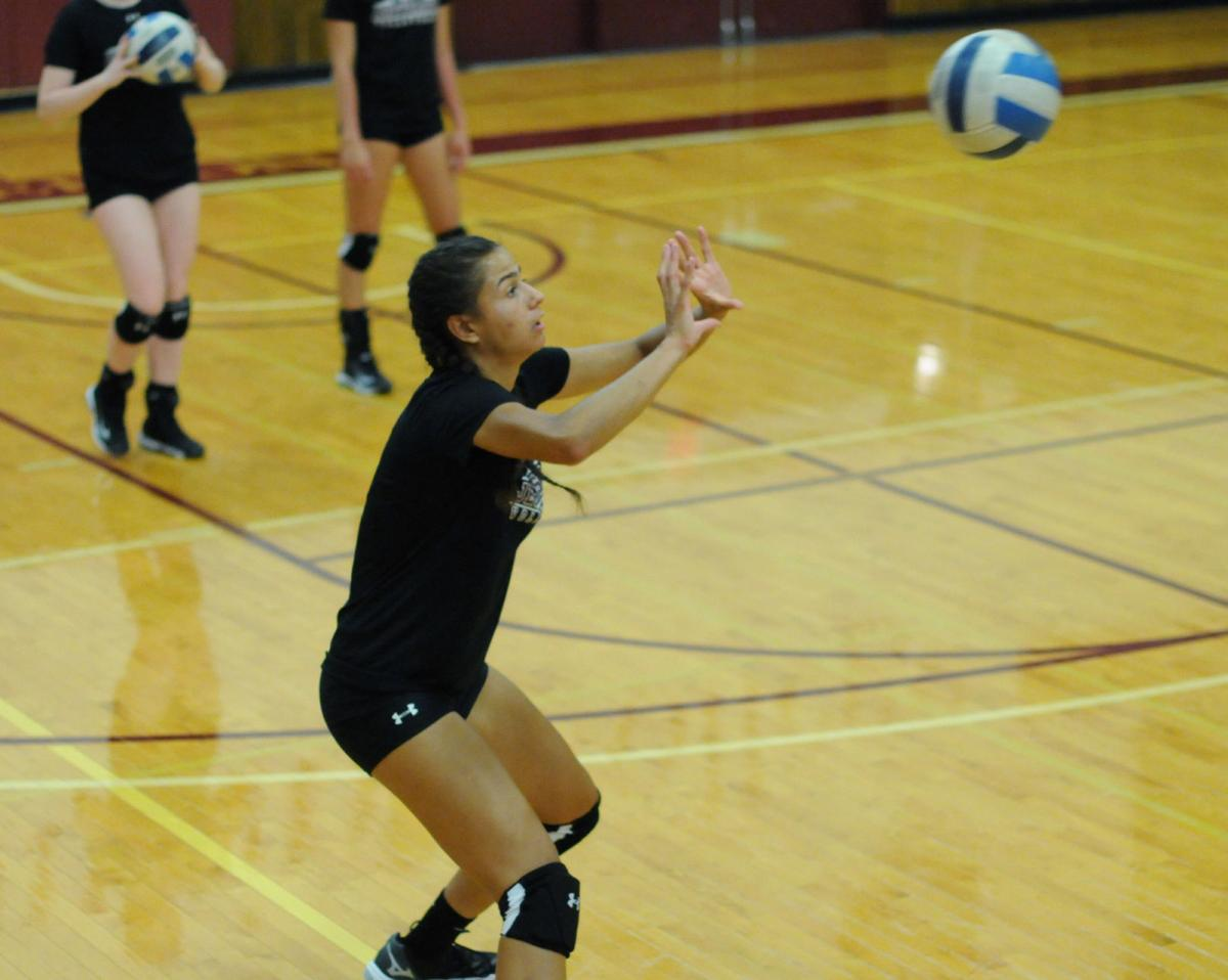 Sandy Creek native gives JCC volleyball team a boost