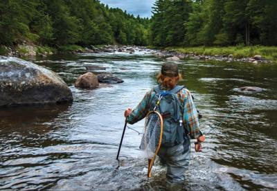 DEC finalizing trout stream management update
