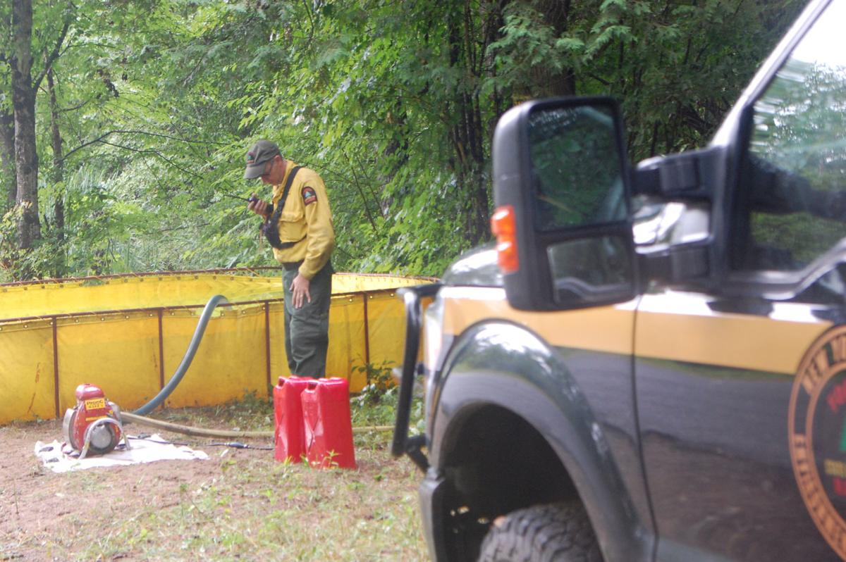 Pitcairn forest fire, caused by lightning, extinguished after 2 days