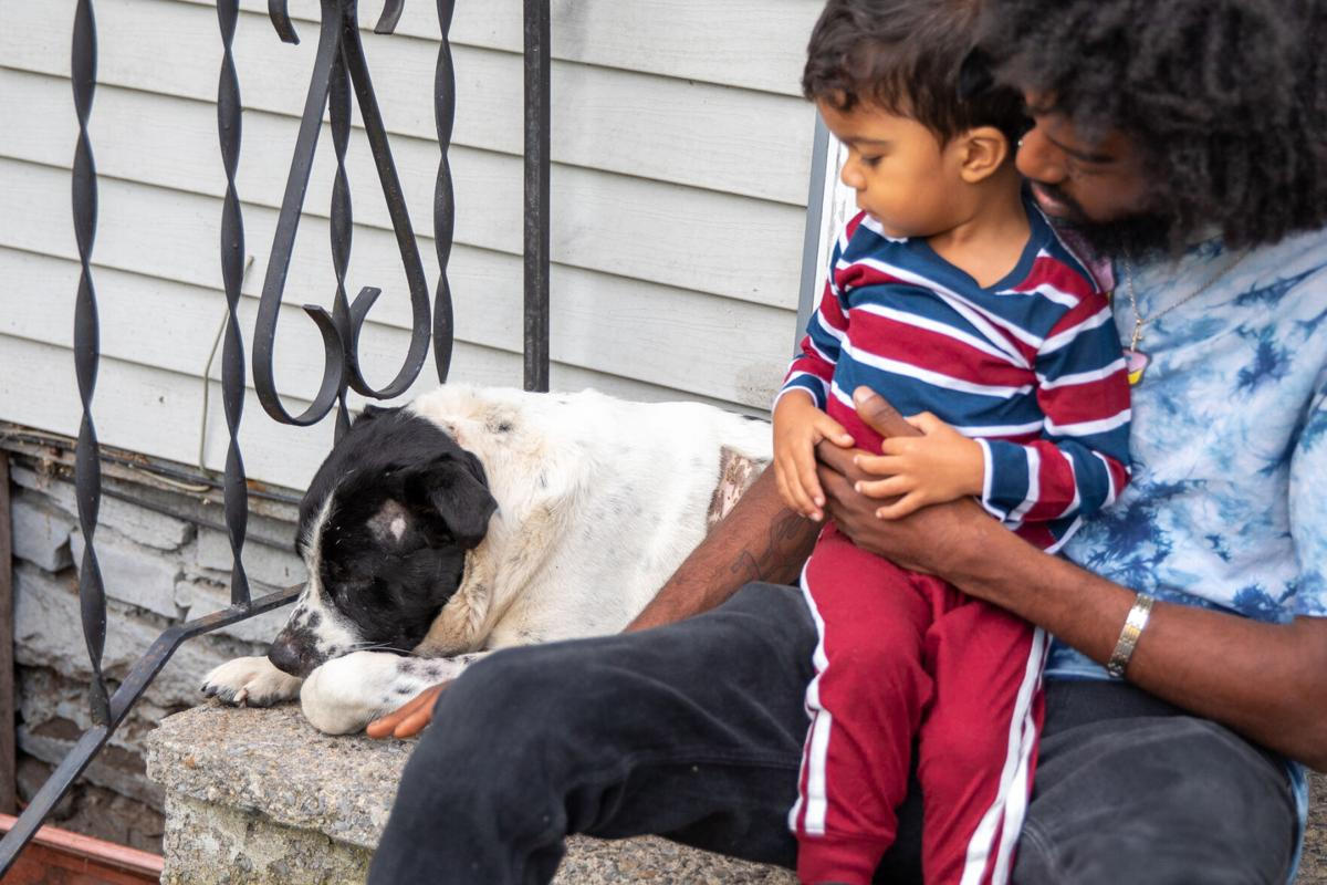 Dog back home after ordeal