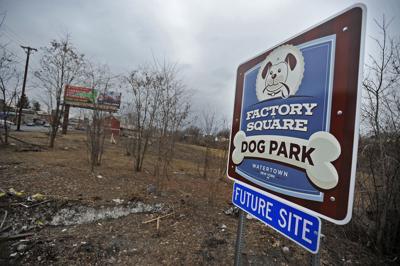 City dog park proposal may get new life
