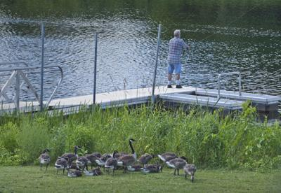 Fishing with an audience