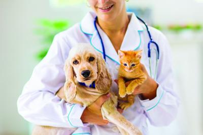 Call today to schedule pet's appointment at Parish rabies clinic Sept. 30
