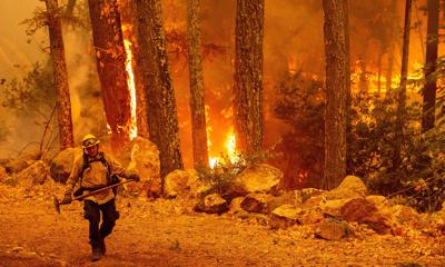 Calif. fire 50% contained; 600 homes destroyed
