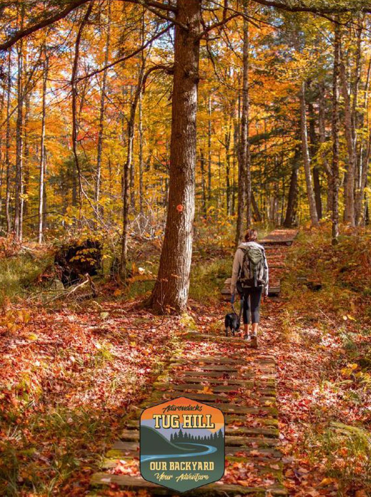 Lewis County fall foliage tour set for Saturday