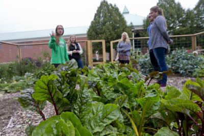 Clarkson University noted for its sustainability