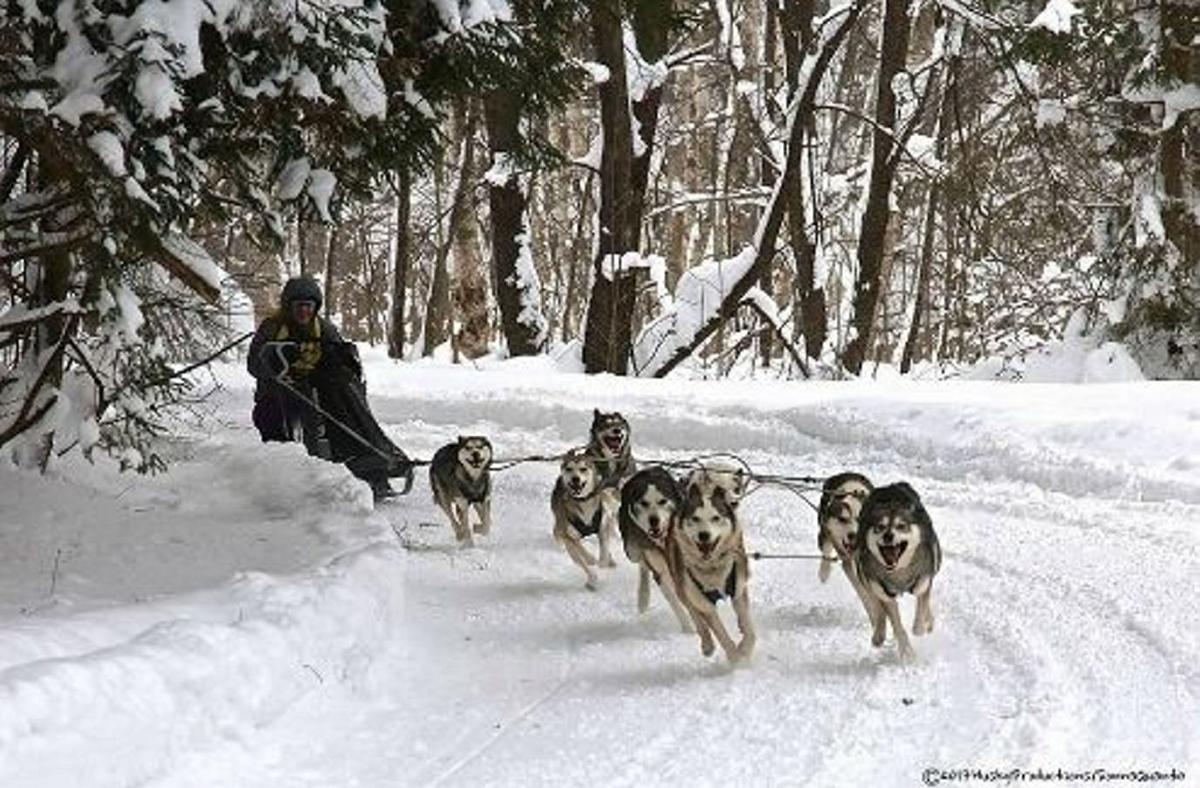Tug Hill hosts winter hike, race