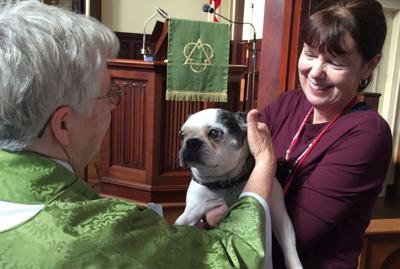 Blessing of the Animals set for Oct. 6 at Church of the Resurrection