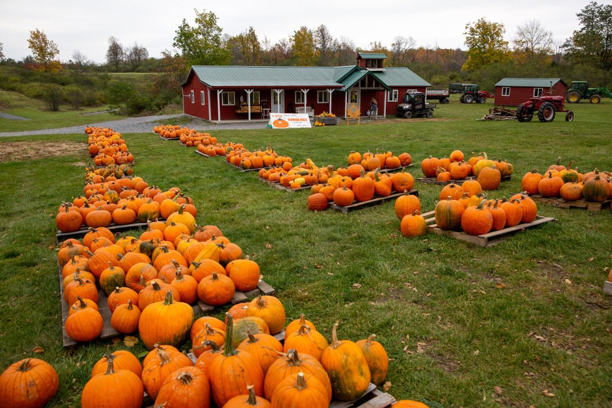 Maple producers hosting fall open house events