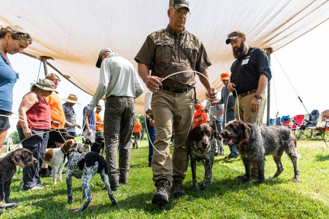 Webfoot Outdoors and kennel facility a net gain for dogs