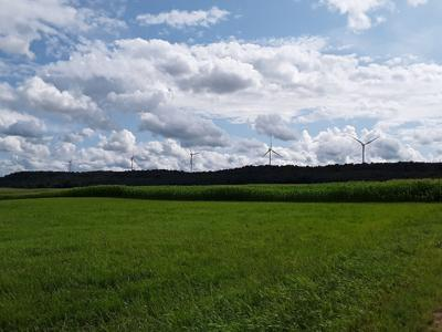 Wind farm urged to follow noise limits