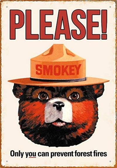 NY celebrates 75 years of Smokey Bear