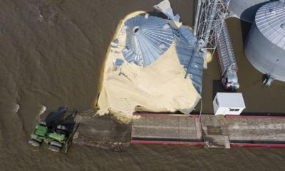 Food supply at dire risk, U.N. experts say