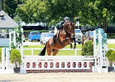 Clarkson offers equine management course