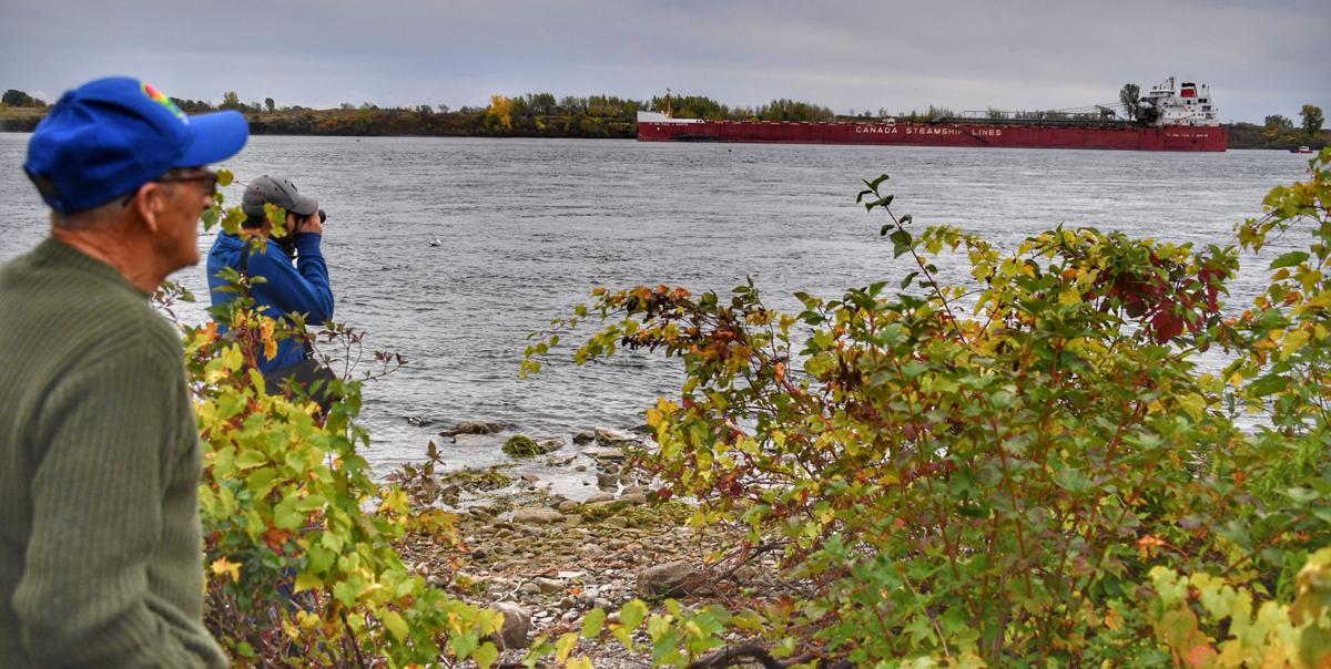 Grounded ship slows Seaway traffic