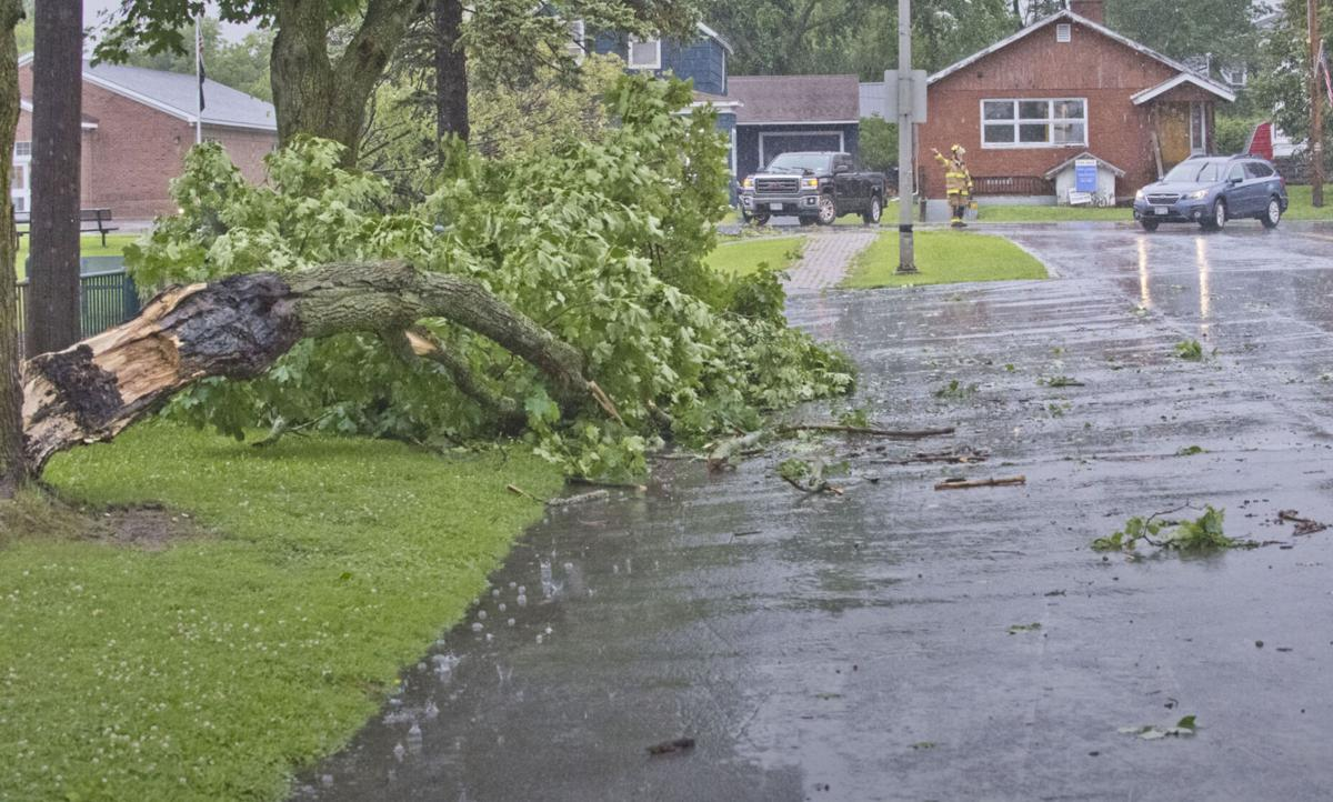 Storm downs trees, power lines