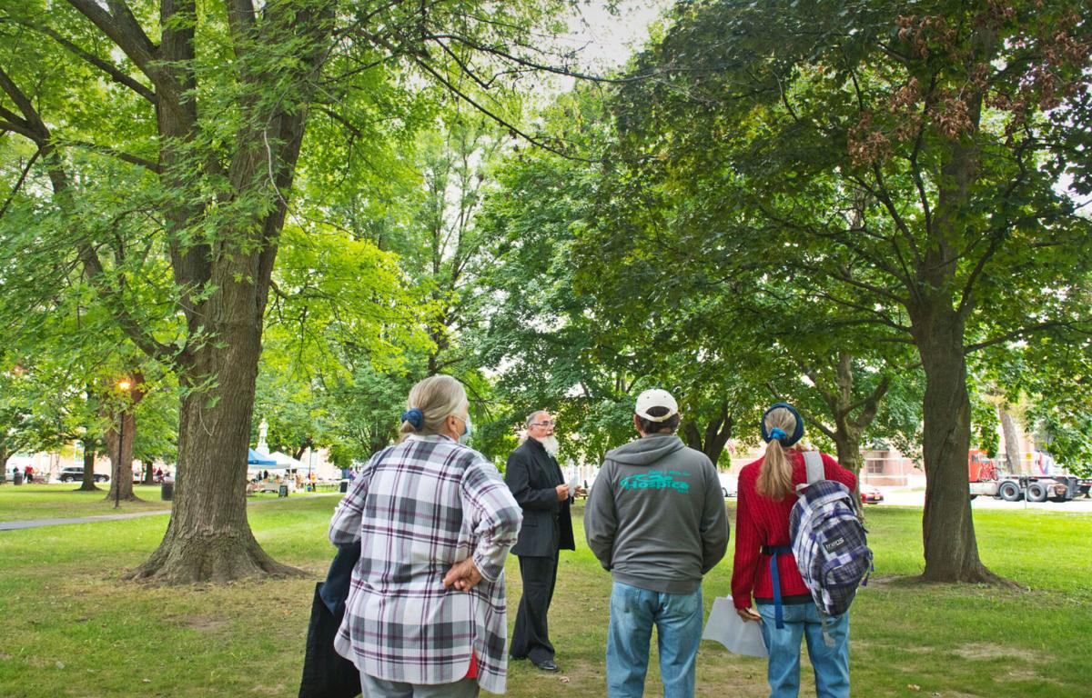 Funds secured to rehab, remove, replace Canton Village Park trees