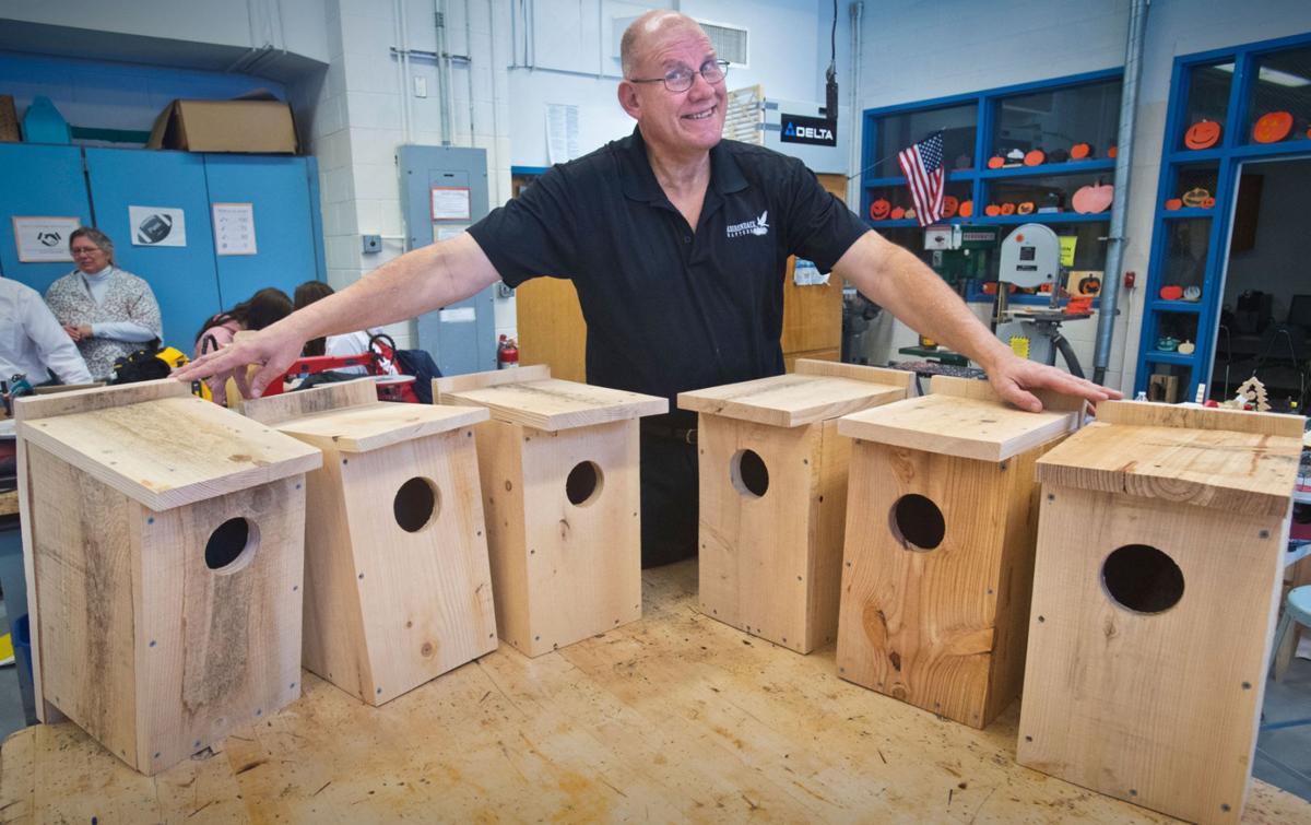 Boxes boost bird population