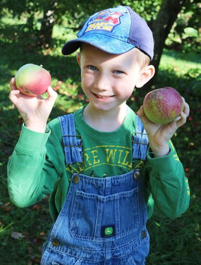 Charles E. Riley UPK students learn all about apples