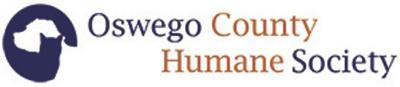 Oswego County Humane Society to host Cats & Snacks