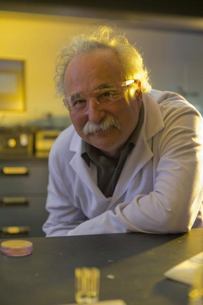 Clarkson professor named Fellow of ISE