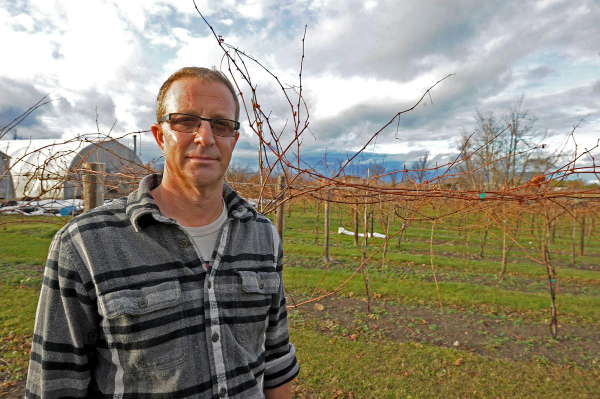 Vintners sour on grant | News | nny360 com