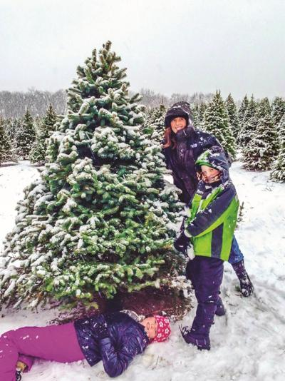 Buy a fresh and local Christmas tree this year