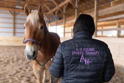 ####_MAGS_horses_ss-17.jpg-web