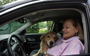 Top 10 dog-friendly cars include some not-so-obvious choices.