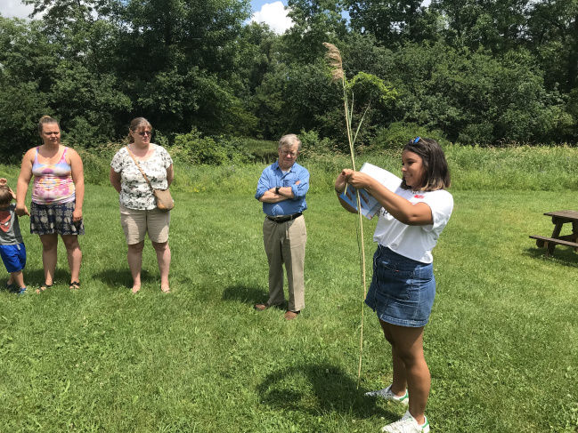 Workshop uses invasive plant to create paper