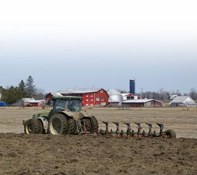 Report ranks NNY second in state agriculture sales