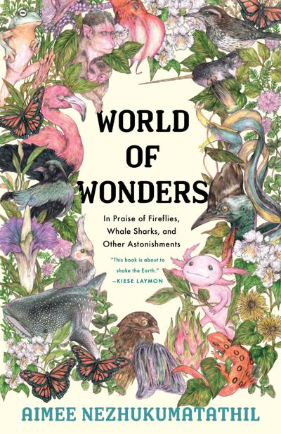 'World of Wonders' is a beautifully written, illustrated work of magic