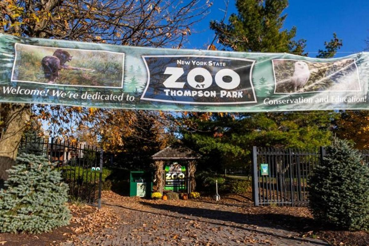 NYS zoo at park reopens today