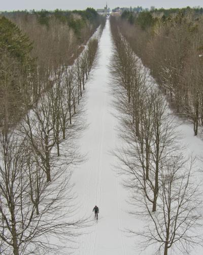 Cross country skier in for the long haul