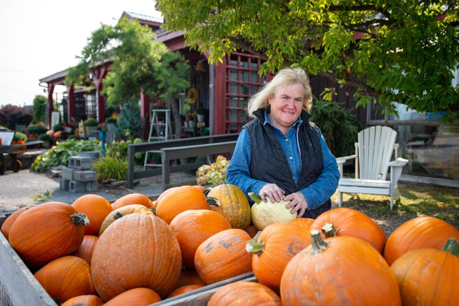 Simmons Farm coming to new Pamelia antique shop, food stand