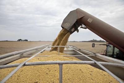 New trade deal may push China to retreat from U.S. farmers