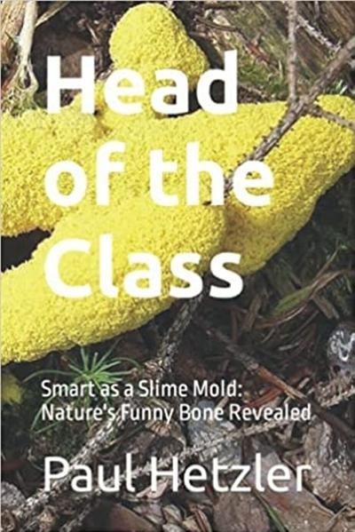 Paul Hetzler publishes 2nd book