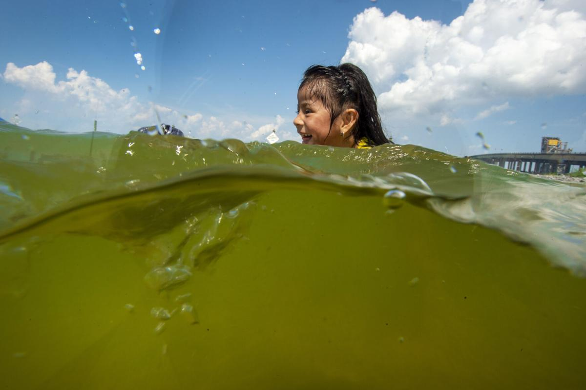 Algae in Lake Pontchartrain