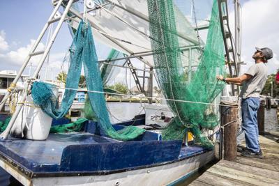 BR.shrimplawbiz.adv.05.JPG for GAM 081820