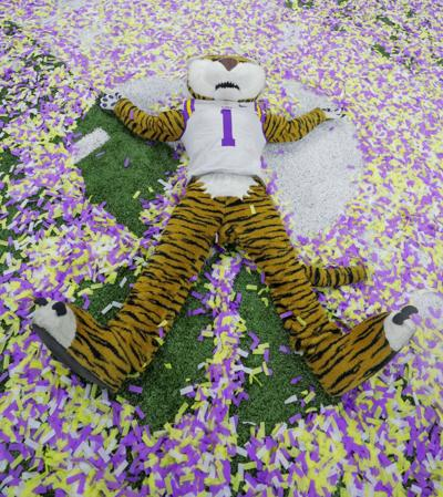 LSU tiger in confetti