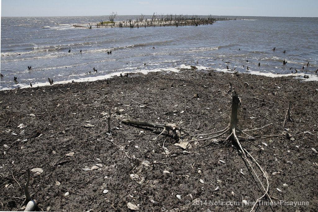 bp oil spill effect on oil prices